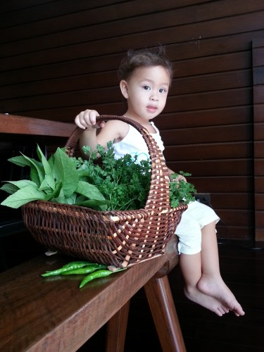 Everyday, after breakfast, Solana picks from our garden what our Manang can whip up for us in a variety of exciting recipes.