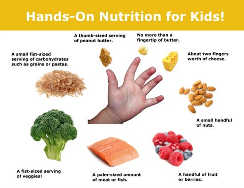 Hands-On-Nutrition-For-Kids